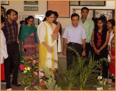 Awareness Program on World Environment Day